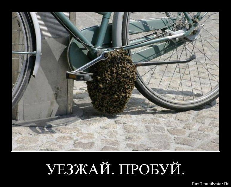Попросили смешные польские слова с переводом на русский тронута вашей заботой