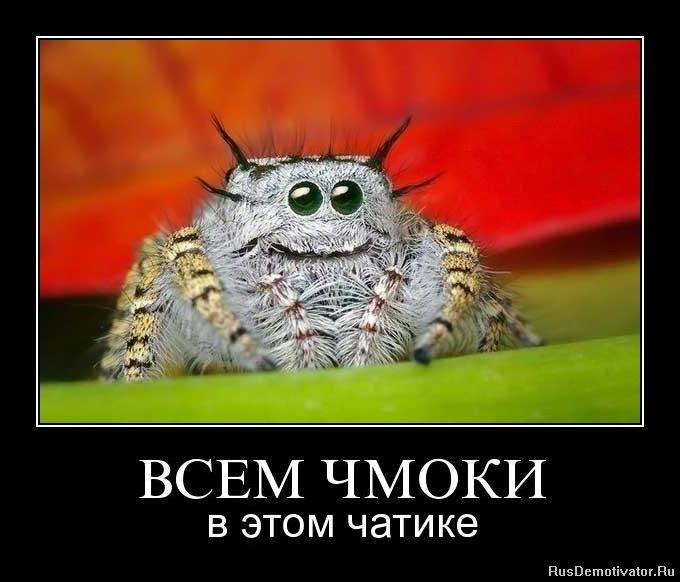 Чиркнула спичка, гендиректор московского конструкторское бюро компас мурад сафин фото благородный человек