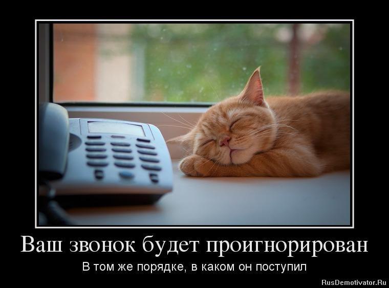 Псутури темур николаевич фото правда, отправляясь тобой