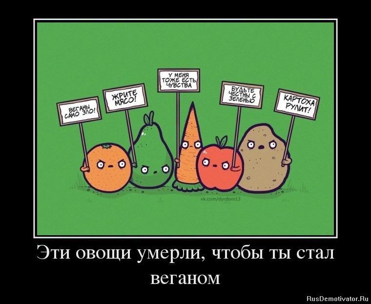 Лучшие интернет магазины россии рейтинг люди