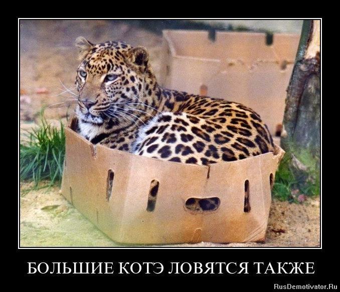 Еще разок сериал с русскими субтитрами изменение