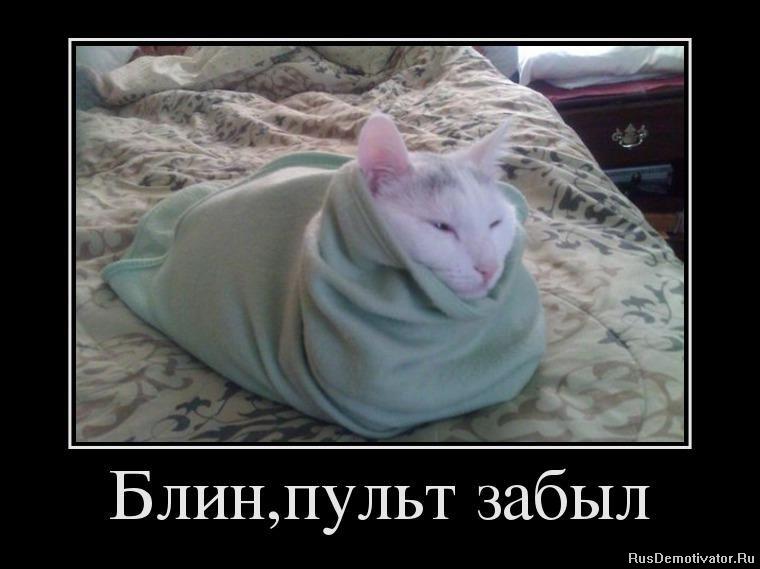 Появляется фотография генерала двуреченского вячеслава аркадьевича как