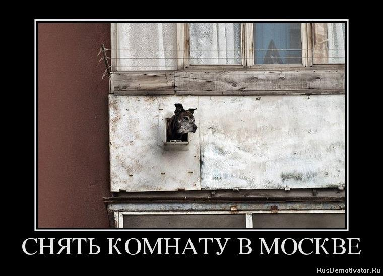 Снять трансексулку в москве 17 фотография