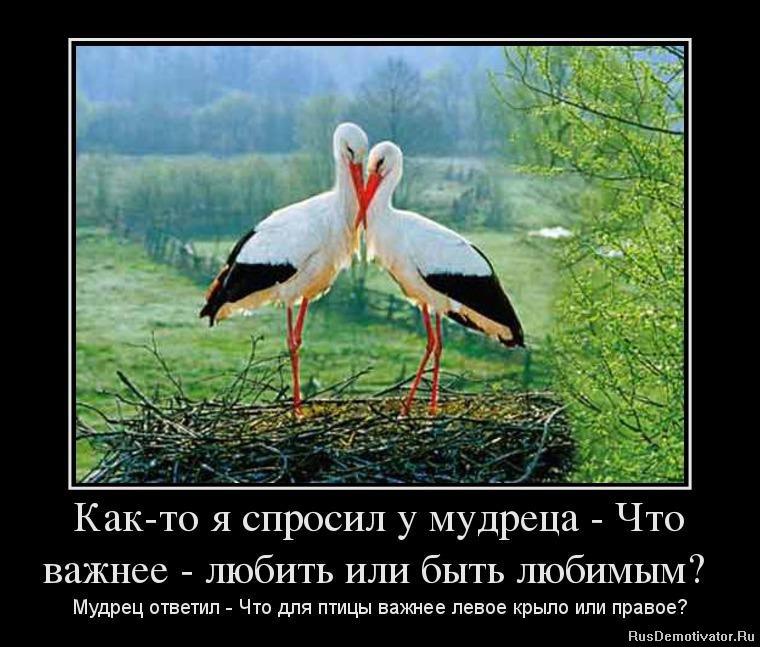 Как-то я спросил у мудреца - Что важнее - любить или быть любимым? - Мудрец ответил - Что для птицы важнее левое крыло или правое?