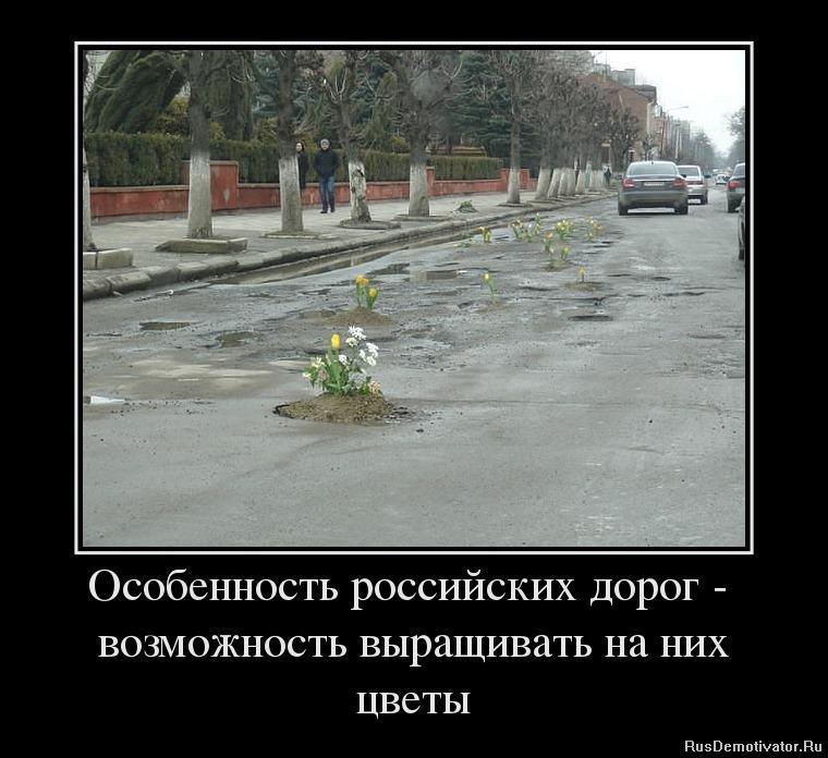 http://rusdemotivator.ru/uploads/posts/2013-06/1371133489_23956169_osobennost-rossijskih-dorog-vozmozhnost-vyiraschivat-na-nih-tsvetyi.jpg