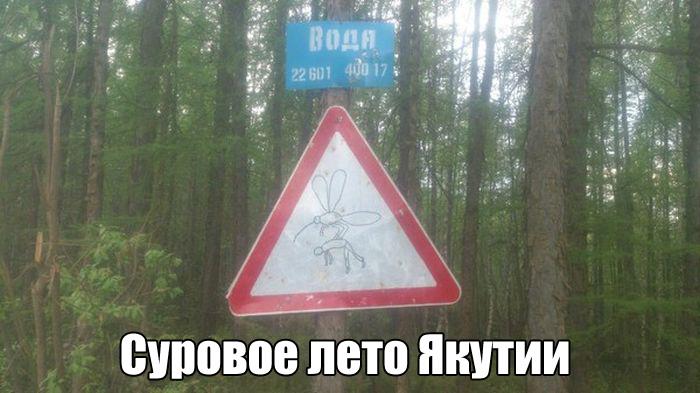 Суровое лето Якутии