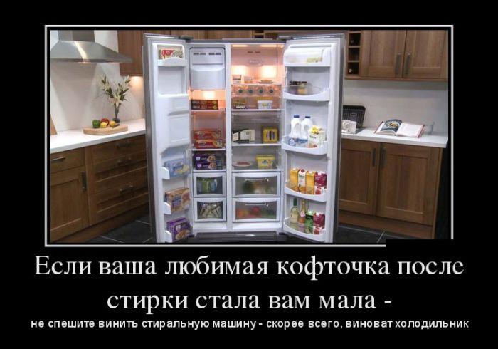Если ваша любимая кофточка после стирки стала вам мала - не спешите винить стиральную машину - скорее всего, виноват холодильник
