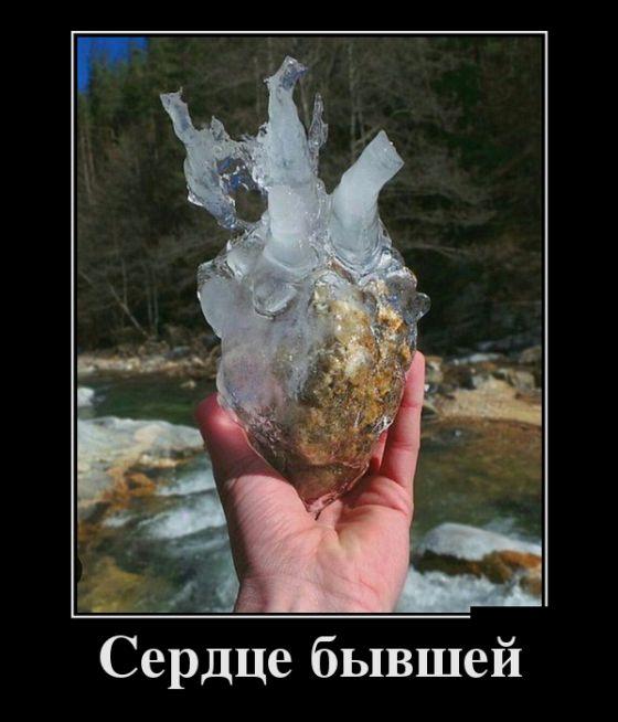 Сердце бывшей